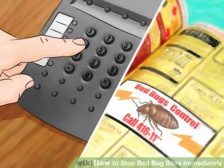 Image titled Stop Bed Bug Bites Immediately Step 18
