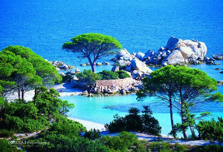Set de table - Palombaggia / Sant'Amanza - Corse Corsica