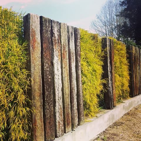 #quintalpaisagismo #projeto #paisagismo #muro #dormentes #bambu #bambusa #great #green #jardim #jardinagem #gardening #garden #gardendesign #designer #design#landscapearchitecture #landscape #landscapedesign #curitiba #curitibacool #chacara #paisagista #contemporaneo