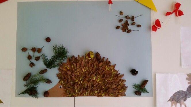 Igel aus Ahorn Nasenzwicker Gruppenarbeit Σκαντζοχοιρος με υλικά της φύσης  Ιδιωτικός παιδικός σταθμός Μονάχου