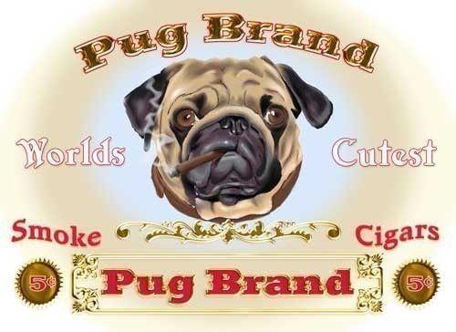 pug cigar dog art print by rubenacker on Etsy, $13.99