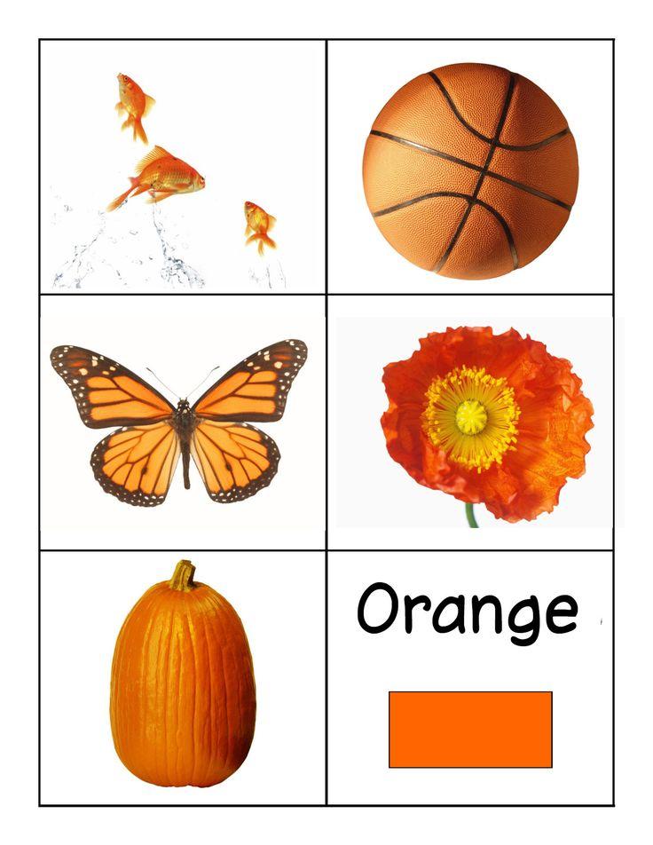 kleuren leren oranje