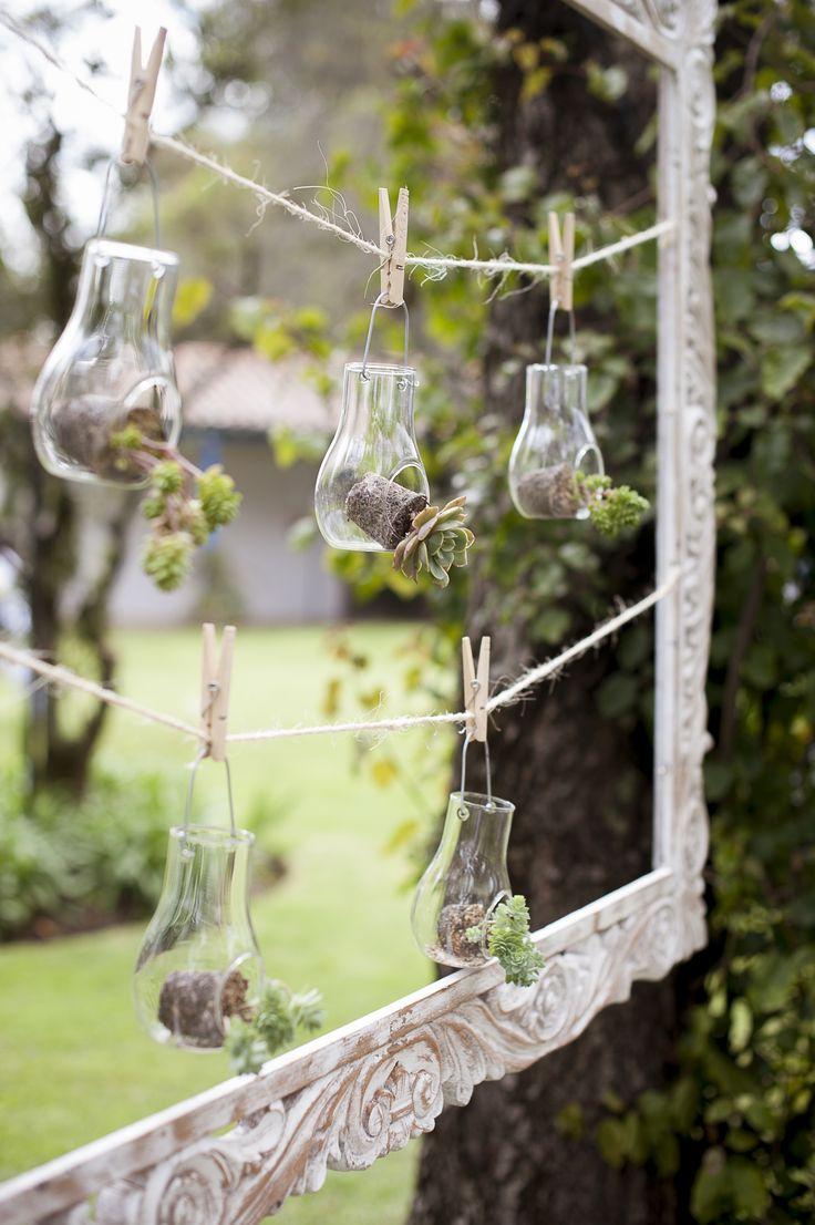 Succulents - Vintage Frames - Details - Suculentas en marcos antiguos para detalles en los jardines By MY Group Eventos