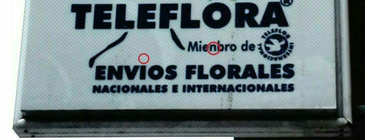 Cuando me vendan un ramo de flores, les pagaré con diccionarios a pesar de que sean mieMbros (se escribe M delante de P y B) de Teleflor Internacional. No tendré en cuenta el tipo de envÍo (lleva tilde en la vocal cerrada tónica por ser hiato) que tienen.