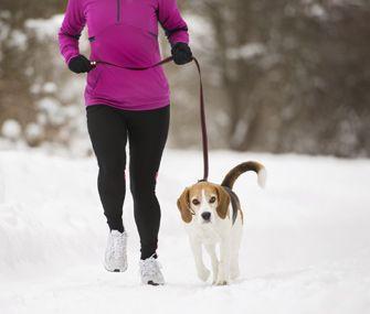 Major Dog-Walking Mistakes To Avoid