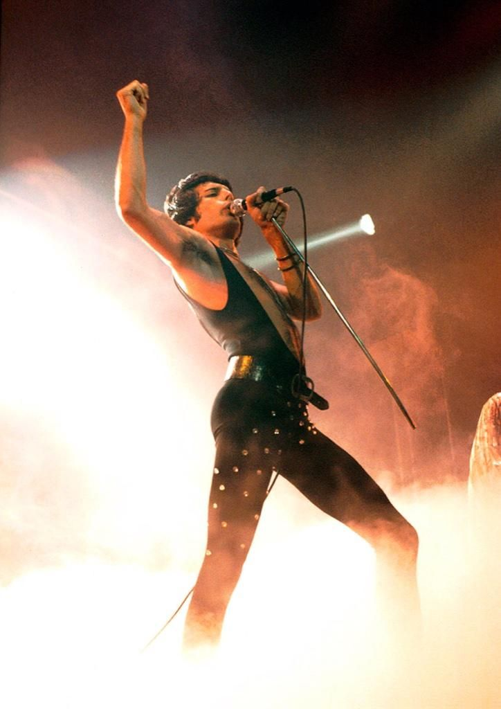 127 Best Images About Inara Decor On Pinterest: 127 Best Images About Freddie Mercury On Pinterest
