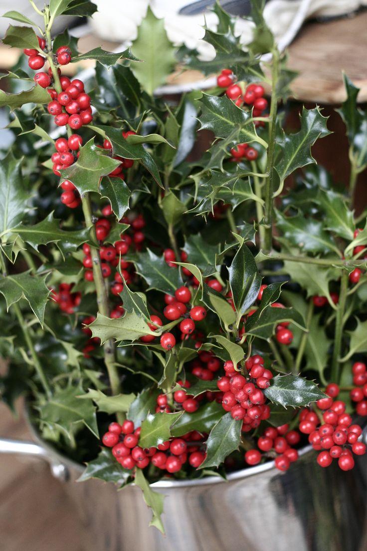 Christmas Holly Tree Part - 27: Pinterest