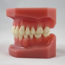 Advantages of invisalign for teeth alignment