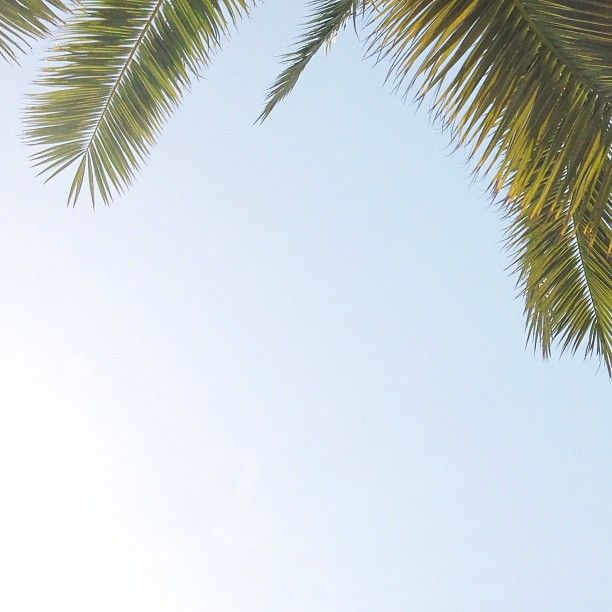 #summer 🌿