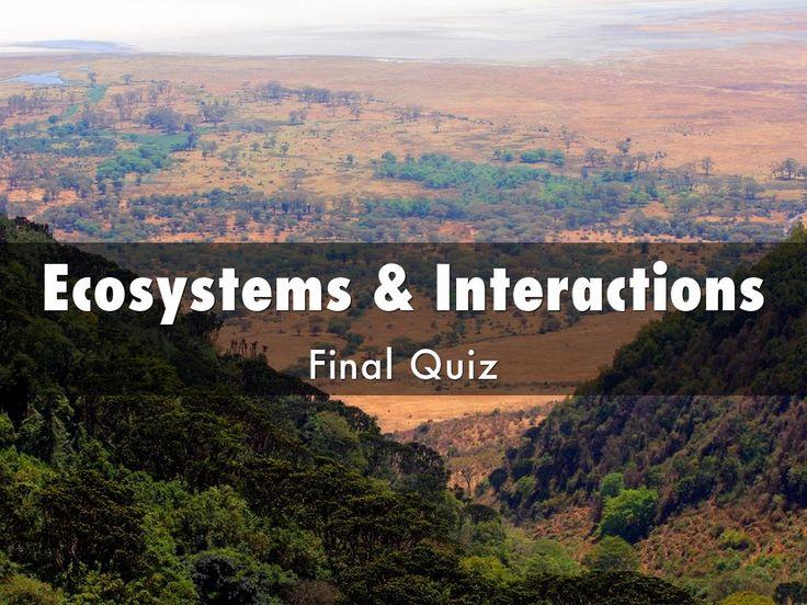 """""""Eco & Inter Quiz"""" - A Haiku Deck #setyourstoryfree"""