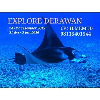 #derawan #maratua #pulauderawan #kakaban #sangalaki #derawanparadise #tourderawan #traveling #hmemed #derawanisland #traveling #opentrip #snorkeling #indonesia