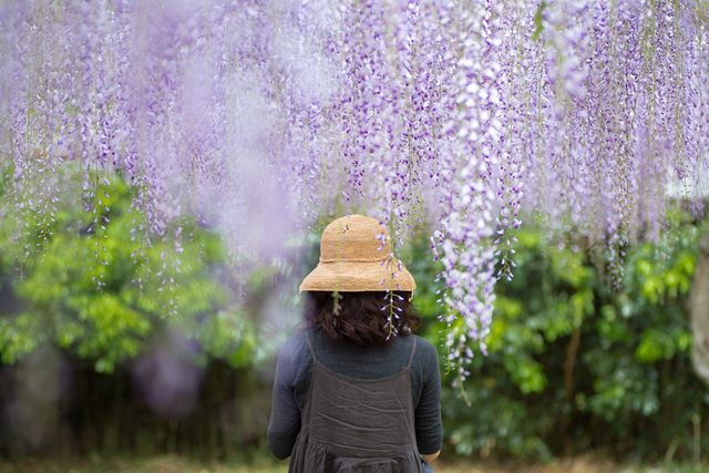 http://www.flickr.com/photos/minato/7138856281/