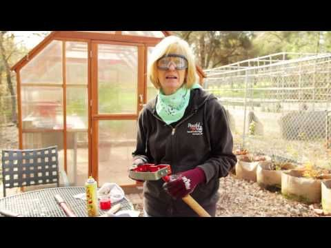 How to Sharpen Tools -- Pruners, Loppers, Shovels and More! (@Chip Cantrell you need this!)