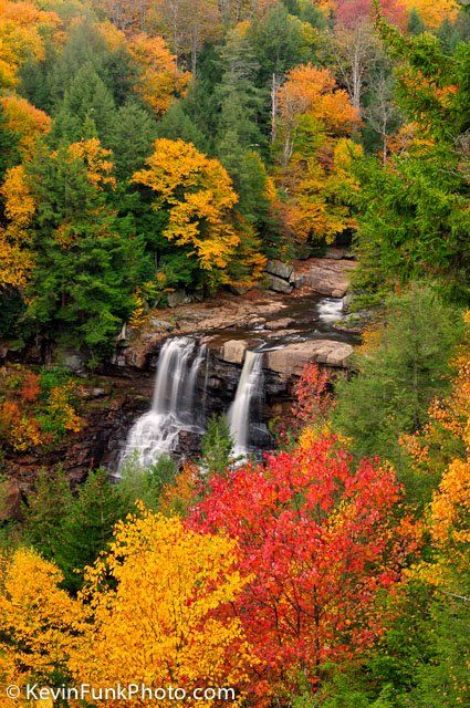 Blackwater Falls Gentle Trail Overlook, West Virginia; photo by. Kevin Funk Photography