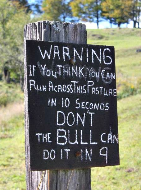 """""""Warning. If you think you can run across this pasture in 10 seconds; don't. The BULL can do it in 9."""""""