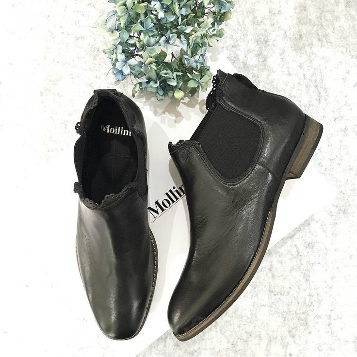 The perfect black ankle boot - Whippy!😍#EvansShoes #Boots #Mollini #Shoes #Perfect #Winter #Fashion #Style #Love