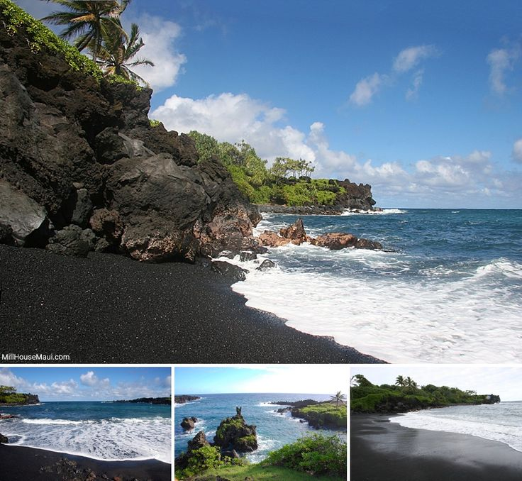 1000 images about road to hana on pinterest orchid