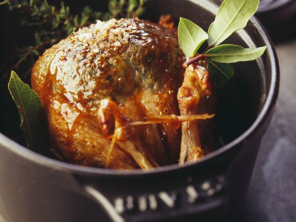 Die besten 25+ Taubenfleisch Ideen auf Pinterest Tauben torte - leichte küche mit fleisch