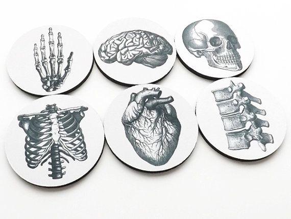 SOUS-verres hôtesse graduation cadeaux anatomie étudiant en médecine cardiologie crâne anatomique cœur parti faveurs geekery professeur médecin infirmière chiro