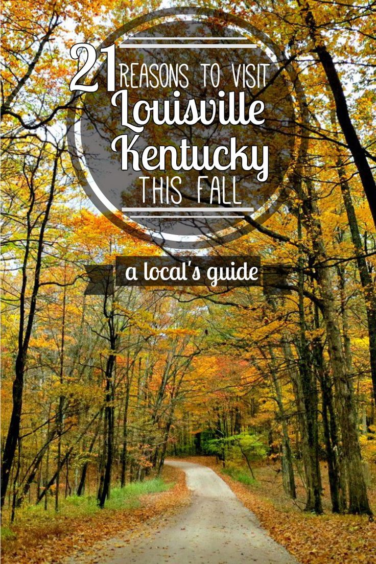 21 Reasons to Visit Louisville, Kentucky this fall! Louisville is an AWESOME Halloween destination. #fall #halloween #travel