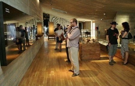 Archeopark Pavlov - Historické muzeum