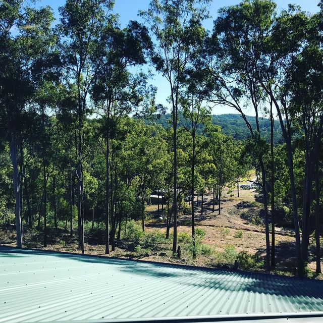 What a beautiful view Gutter-Vac Brisbane South West had while cleaning the gutters on this  Mundoolun property.