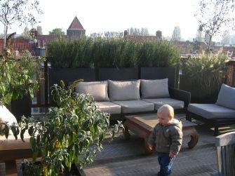 Dakterras ontwerp: beschutting tegen de wind door plantenbakken, windscherm is de afscherming van het dakterras. Houten dakterrasvloer. Hekw...