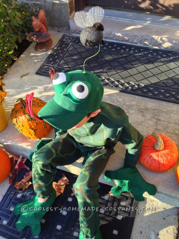 Fantastic Frog Costume for a First Grader...