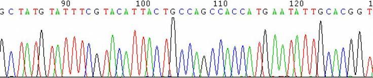 New AP Biology Curriculum Framework | Jung's Biology Blog