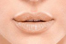 Lakme 9 to 5 Crease Less Lip Balm – Lip Swatches caramel review
