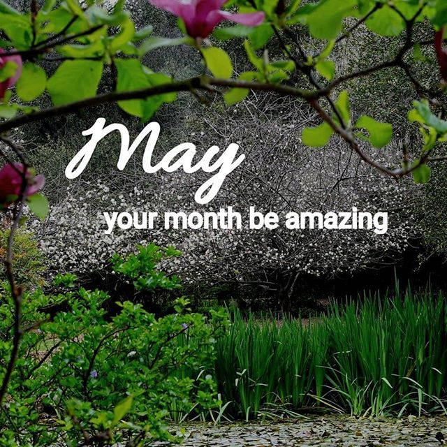 All Things Seem Possible In May Unique Wallpapers To