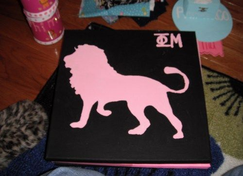 a bunch of different phi mu crafts