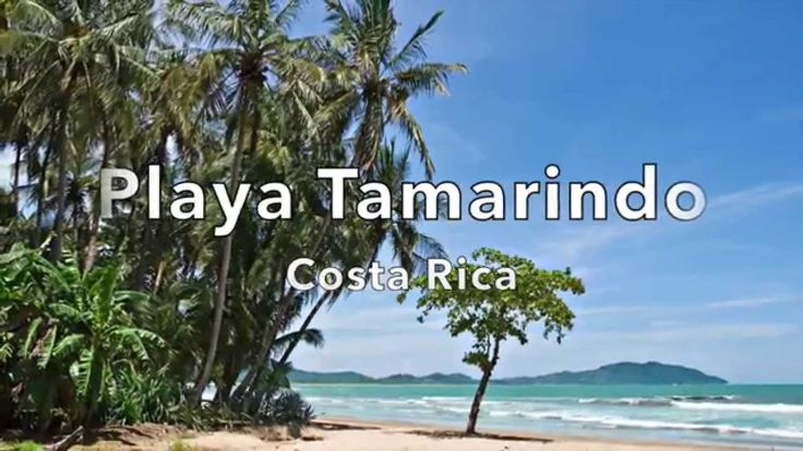 117 best tamarindo costa rica photos images on pinterest for Tamarindo costa rica fishing