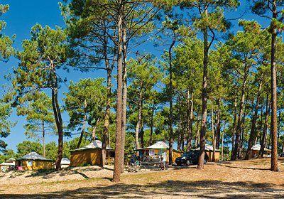 Location Biscarrosse Plage Odalys, promo location Mobil-Home Domaine Résidentiel de Plein Air Le Vivier prix promo Odalys Vacances à partir ...