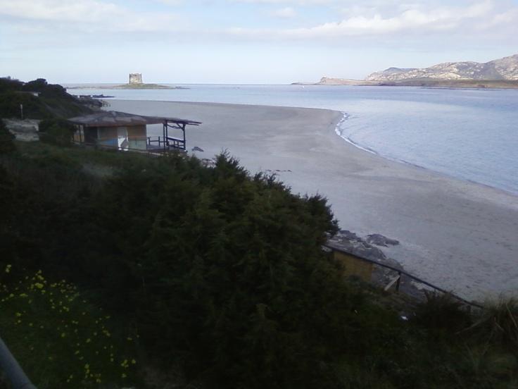 #Stintino, spiaggia #LaPelosa. Dopo quasi vent'anni torna la sabbia davanti al chiosco. Durerà sino all'estate?