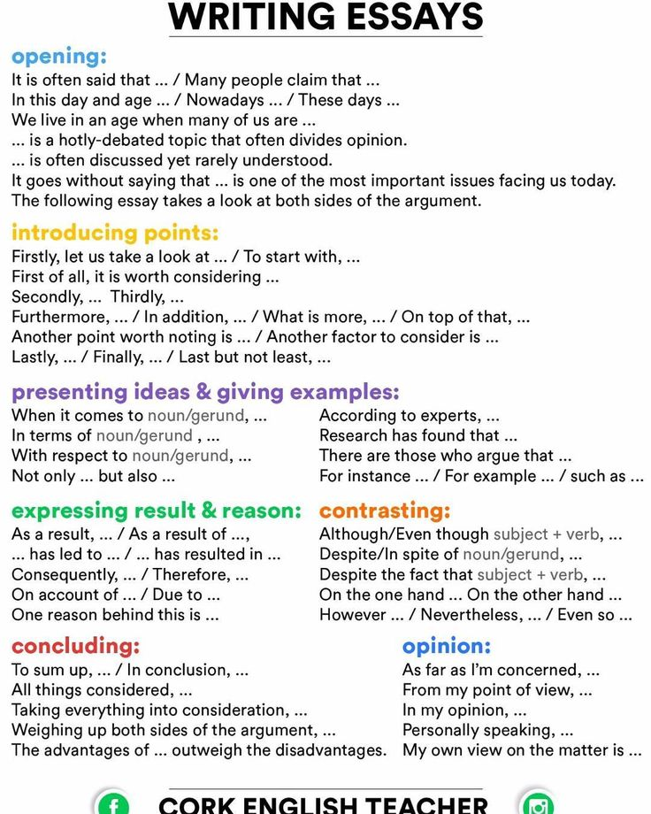 Essay pay writing vocabulary