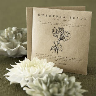 Seed Packets: Gardens Seeds, Seeds Packets, Ceramics Flower, Seeds Packaging, Favourit Flower Sweetpea, Invitations Ideas, Decks Chairs, Gardens Deckchair, Products Packaging