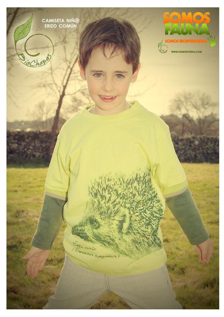 Camisetas - Erizo común - Manga corta - SomosFauna - Color verde pistacho