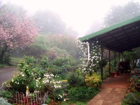 it was a slow approach through the magical Midlands mist.. Groundcover Leather Goods. Visit www.midlandsmeander.co.za