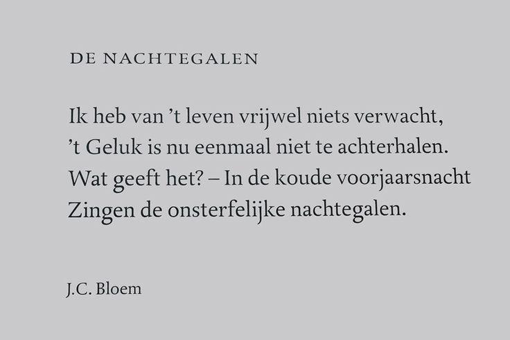 In de Haagse Archipelbuurt vind je prachtige gevelpoëzie van bekende dichters. Maak eens een culturele wandeling langs alle gedichten | Haagsehotspots.nl