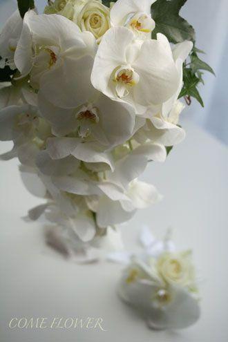 ☆.。.:*・花美を創造する幸せスタイル  in 二子玉川☆.。.:*・-好調欄のキャスケード