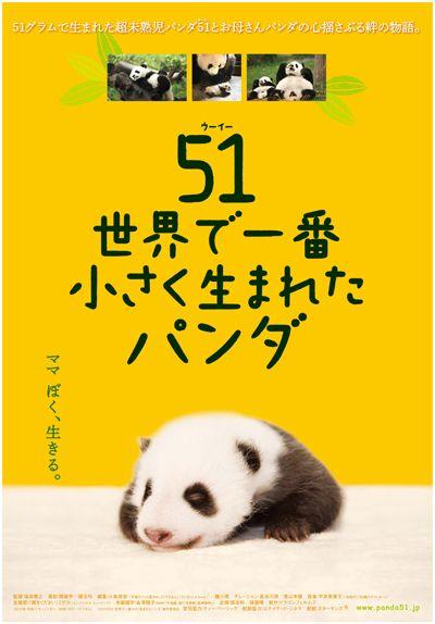 panda_poster.jpg (400×574)