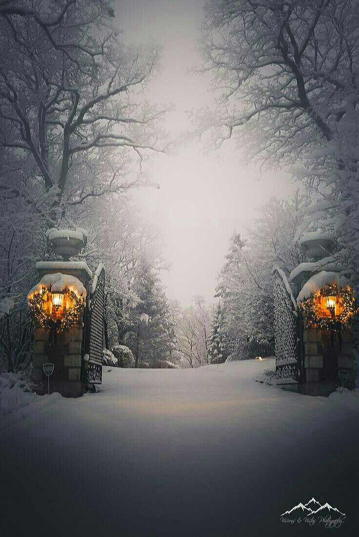 692 best garden in winter images on pinterest winter garden