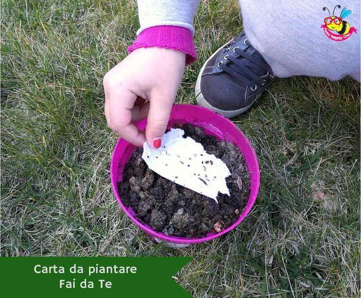 Carta seminabile fai da te, come creare una carta da piantare in casa. Carta riciclata con i semi dei fiori per biglietti di auguri e matrimonio