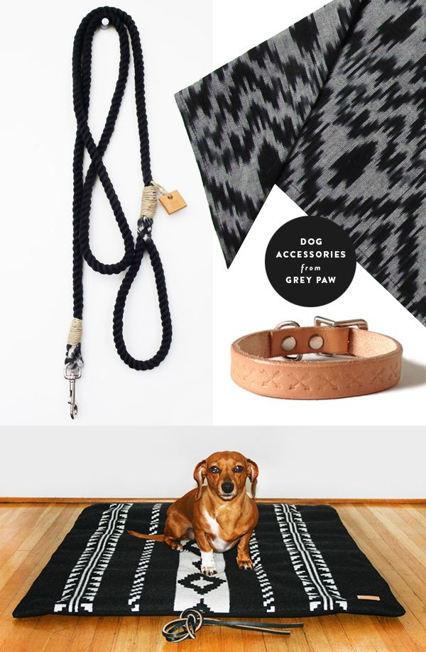 Dog accessories by Grey Paw, including rope leashes, natural leather collars, ikat neckerchiefs, and Pendleton patterned beds   Product selection by Door Sixteen