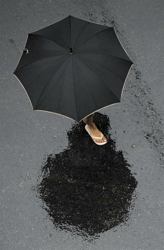 2838 best images about Under My Umbrella on Pinterest ...