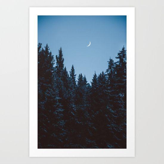 moon, luna, photography, teapalm, tasha marie, trees, snow
