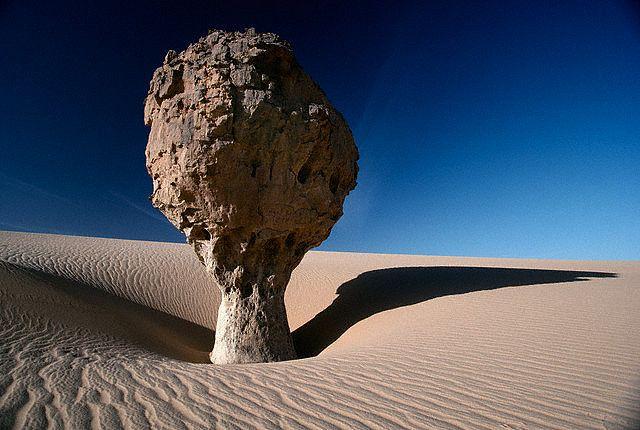 Sólo un árbol de piedra en medio del desierto, un yardang de miles de años  Esta formación rocosa se encuentra en el la Meseta del Tassili (Argelia), en pleno desierto del Sáhara. La erosión de la arena, movida por los vientos del desierto, ha moldeado este árbol pétreo.  Durante miles de años los pequeños granos de arena han golpeado la roca para conseguir su forma actual. El menor grosor, de lo que ha terminado pareciendo un tronco...