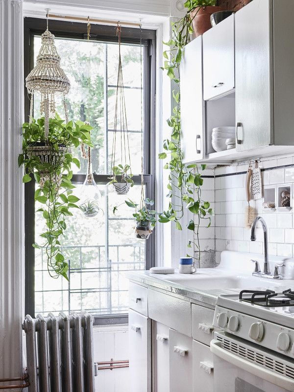 Home tour: I adore in this home the plant selection. Especially in this house I can't keep my eye off of them!