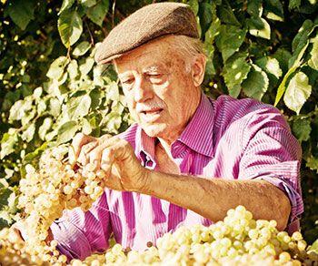 Emidio Pepe is the man #montepulciano #emidiopepe #abruzzo
